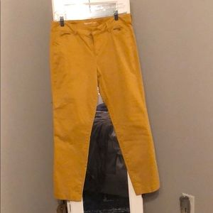 Mustard colored chino pixie pants